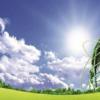 推进规模化绿电开发清洁能源示范基地建设