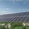 饶阳县2个光伏发电项目予以保留对1.7GW7个风电项目进行了清理